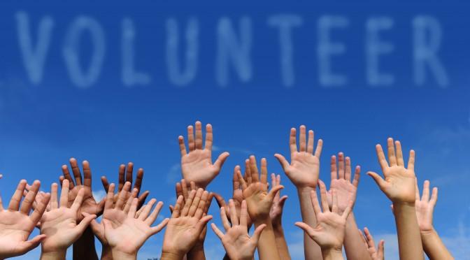 volunteer-da-vinci-foundation